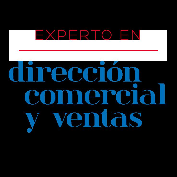 Experto en Dirección Comercial y Ventas UA